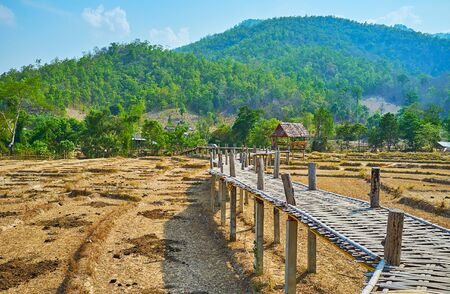 Walk the long and curved Boon Ko Ku So bamboo bridge, running through the dried paddy fields, Pai, Thailand Zdjęcie Seryjne - 130155118