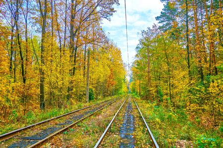 The pleasant autumn day in Pushcha-Voditsa spa resort and historic neighborhood, the yellow leaves are falling down to the rails of city tram net, stretching through the woodland, Kiev, Ukraine.