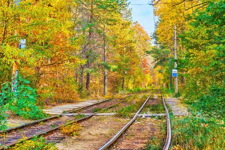 The tram station in woodland of Pushcha-Voditsa spa resort, lined with lush autumn greenery, Kiev, Ukraine 写真素材