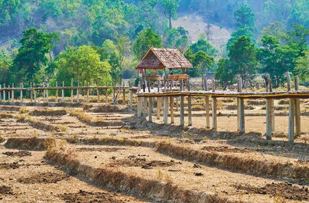 The small wooden pavilion with benches on the Boon Ko Ku So bamboo bridge, surrounded by dried paddy fields, Pai, Thailand Zdjęcie Seryjne - 130157879