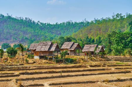 The stilt houses of wicker bamboo with palm leave roofs, situated among the dried paddy fields of Pai suburb, Thailand Zdjęcie Seryjne - 130157910