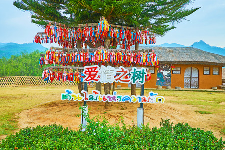 SANTICHON, THAILAND - MAY 5, 2019: The Norfolk pines on Yun Lai viewpoint are decorated with many colorful wishing souvenirs with names of visitors, on May 5 in Santichon Редакционное