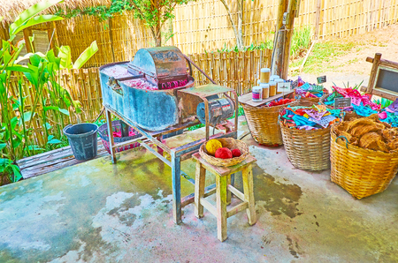 CHIANG MAI, THAILAND - MAY 5, 2019: Paper production in Poopoopaper park - the tub for mixing and coloring of paper dough blends elephant poop with mulberry fiber and dye, on May 5 in Chiang Mai