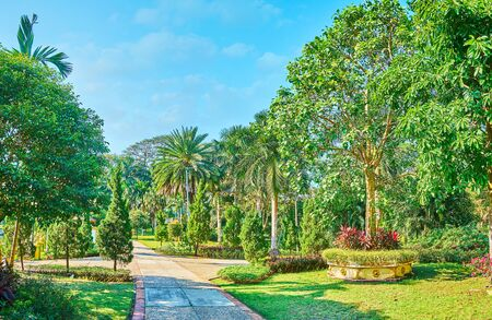 Theingottara park is the best place to relax in old town, walk in shade of trees and enjoy the landscaping, tropical plants, flower beds and juicy lawn, Yangon, Myanmar Stock Photo