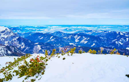 The scenic Alpine landscape with green pines, covered in snow on the foreground, Alberfeldkogel mount, Ebensee, Salzkammergut, Austria