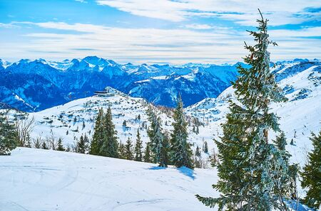 The snowy landscape with tall spruce trees, upper station of cable car and rocky sharp mountains of Northern Limestone Alps on the background, Feuerkogel Mountain plateau, Ebensee, Salzkammergut, Austria 版權商用圖片