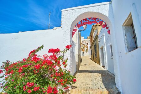 Watch the old hilly Calle Abades street through the white arch with blooming bougainvillea bush on the foreground, Arcos, Spain