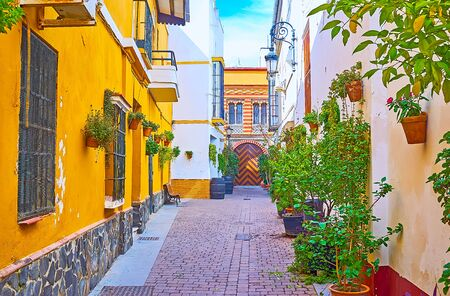 The narrow backstreet, decorated with green plants in pots and old casks, colorful house walls and zigzag pattern on the arched door on background, Sanlucar, Spain Imagens - 150327880