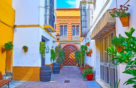The pictresque Andalusian style yard with lush plants in pots, old wooden casks and Mudejar mansion with fine tile patterns, zigzag ornament on door and Arabic horseshoe windows, Sanlucar, Spain Imagens - 150327883