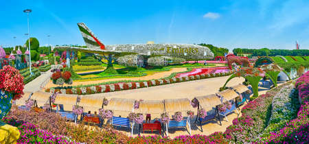 DUBAI, UAE - MARCH 5, 2020: Top panorama of Miracle Garden with its most prominent landmark - airbus, covered with flowers, on March 5 in Dubai 新聞圖片