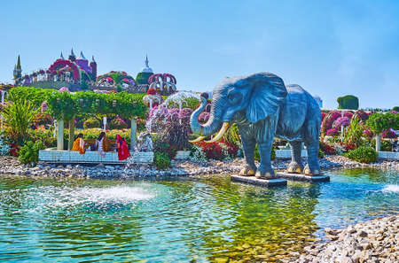 DUBAI, UAE - MARCH 5, 2020: Enjoy the large elephant fountain, located amid the shallow pond of  Miracle Garden, on March 5 in Dubai Publikacyjne