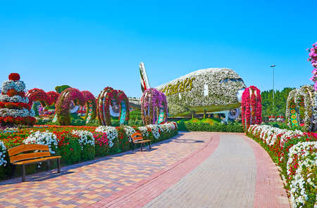 DUBAI, UAE - MARCH 5, 2020: The scenic alley of Miracle Garden, lined with flower beds, benches and leading to the Emirates aircraft, covered with white petunias, on March 5 in Dubai Publikacyjne