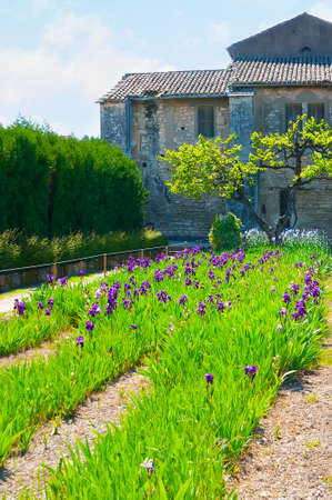 Explore Van Gogh field - the scenic garden at the Saint-Paul Asylum - the mental hospital, served in old monastery building, Saint-Remy-de-Provence, France