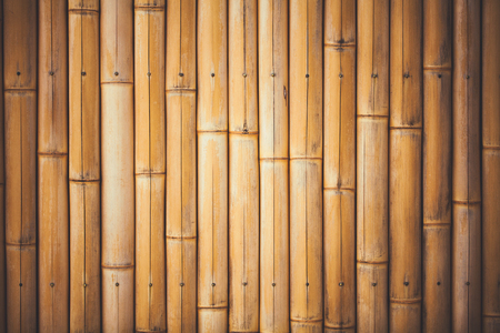 bamboo: Background with yellow beautiful smooth bamboo branches