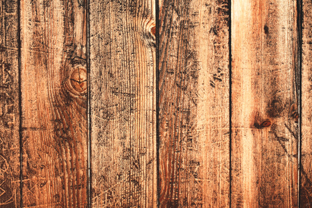 timbering: Old vintage bright textured wooden surface. Can be used like backdrop. Rustic style.