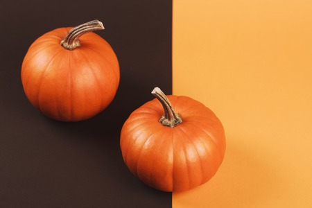 Pumpkin on two-colored background. Helloween vegetable on interesting backdrop with place for text. Stock Photo