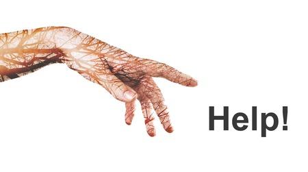exposición: Mano con el árbol del otoño hecho en la técnica de la doble exposición. Arte digital. Concepto de la ecología muestra que las personas y la naturaleza están relacionados entre sí. Una afecta a la otra.