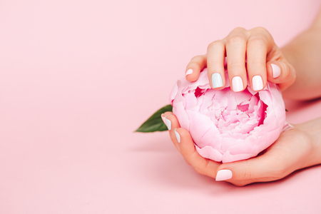 Stylish trendy female manicure. Peony flower in beautiful young womans hands. Pink background.