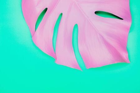 Purple painted monstera leaf on green pastel background. Close up surreal photo.