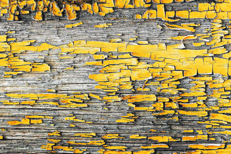 Demonstrating trendy colors 2021 - Gray and Yellow. Background of yellow, peeling paint on an old wooden wall