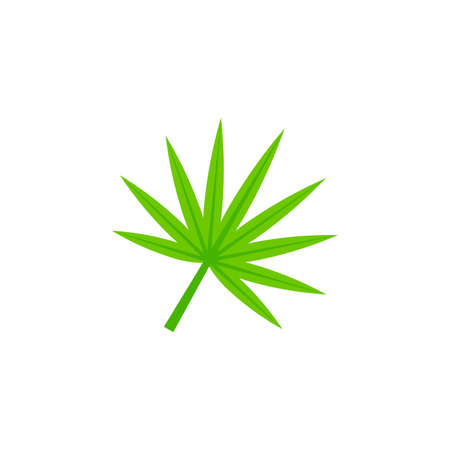 fan shaped weed cannabis leaf flat icon on transparent background