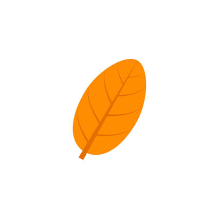 ovate maple leaf flat icon on transparent background Illustration