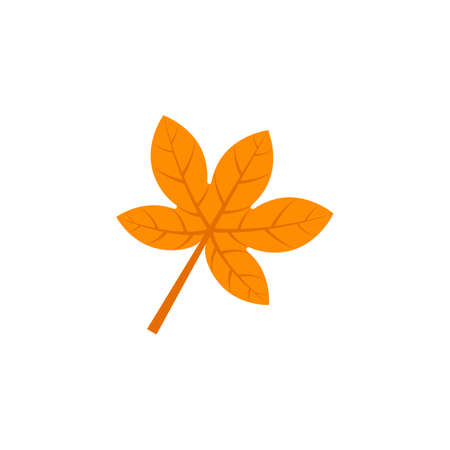 Maple leaf flat icon on white Ilustracja