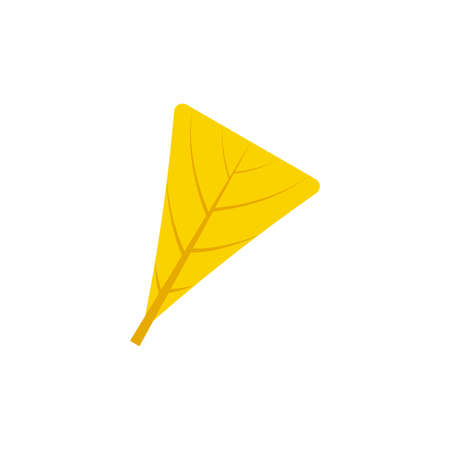 obdeltoid maple leaf flat icon on transparent background