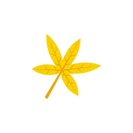 palmatisect maple leaf flat icon on transparent background