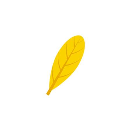 oblanceolate maple leaf flat icon on transparent background Ilustração