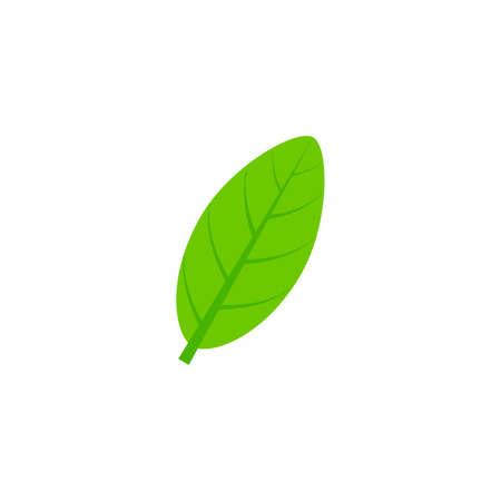 elliptic leaf flat icon on transparent background