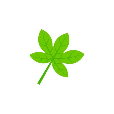 palmatifid maple leaf flat icon on transparent background Ilustração