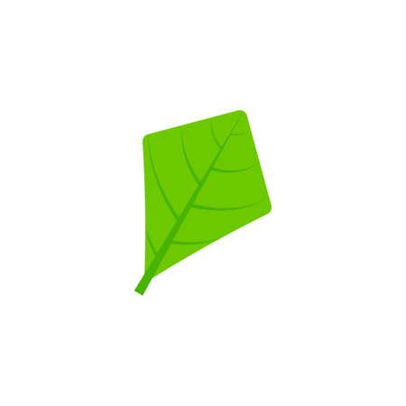 rhomboid leaf flat icon on transparent background