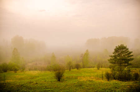 dense fog in the morning. early morning. Stock Photo