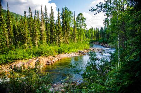 warm Sunny summer day. pure mountain river. 版權商用圖片