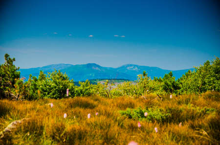 mountain range. Big high hills in green.