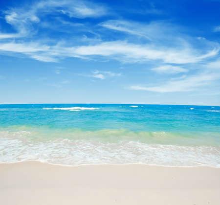 clear day: Beautiful tropical white sand beach.