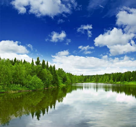 scenic background: Silent lake near green forest. Stock Photo