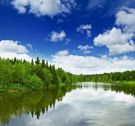 Stille meertje in de buurt van groen bos.