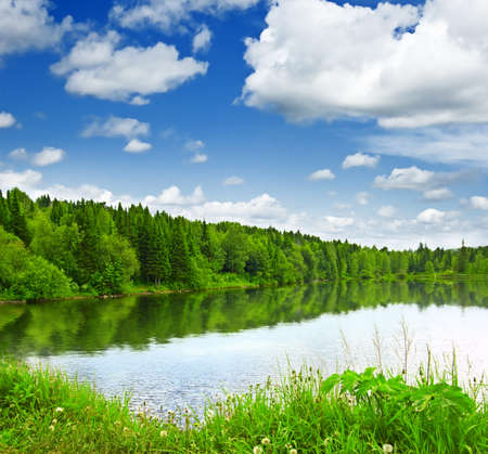 Silent lake near green forest. Stock Photo - 9315348