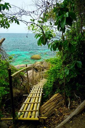 Bamboo footpath in jungle over sea. Stock Photo