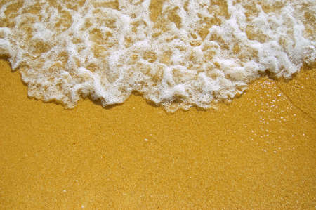 water's edge: White wave on a sandy beach.