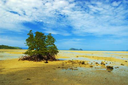 Tide on tropical sand beach. photo