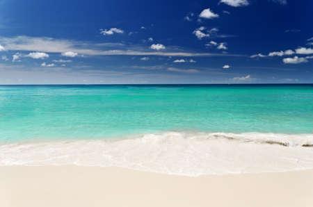 panorama beach: Spiaggia tropicale con il cielo blu.
