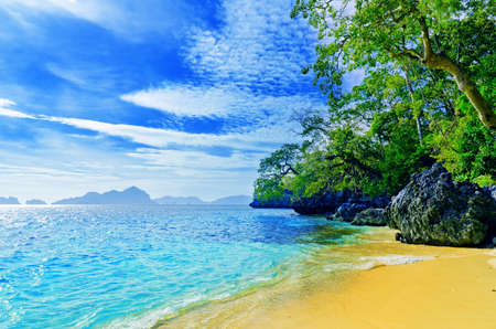 caribbean island: Paradise beach. Sea and sky. Stock Photo