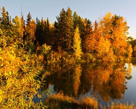 autumn scene: Lake in sunset rays. Autumn landscape.