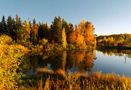 fall scenery: Lake in sunset rays. Autumn landscape.