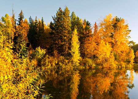Lake in sunset rays. Autumn landscape. Stock Photo - 10843624