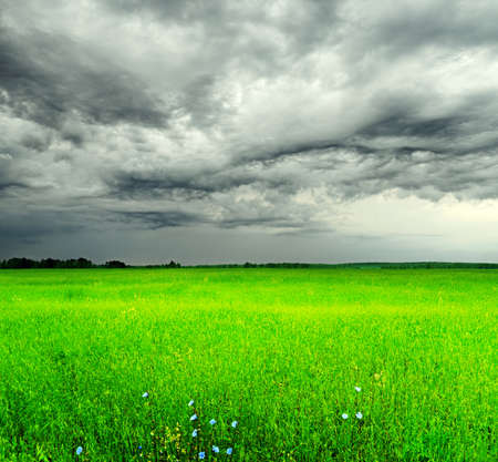 Stormy sky over the green field. photo
