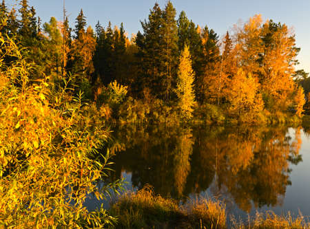 Lake in sunset rays. Autumn landscape. Stock Photo - 11301239